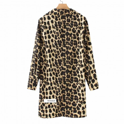 'Briana' Leopard Print Tunic Dress