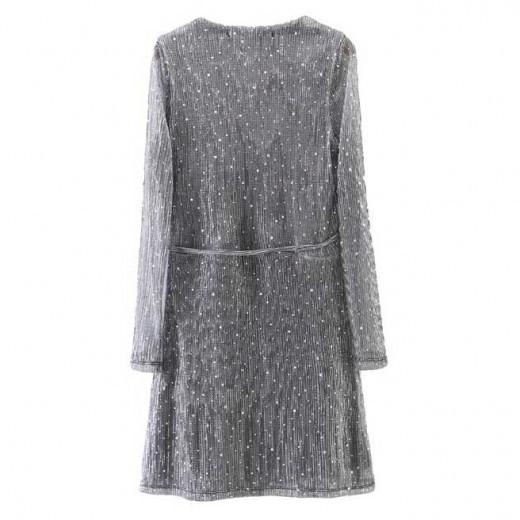Dots Sheer Silver Dress